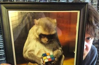 Cubing Record is BANANAS