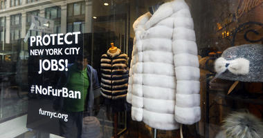 This April 10, 2019, photo shows a sign by furnyc.org in the window of Victoria Stass Collection in New York's fur district.  (AP Photo/Richard Drew)