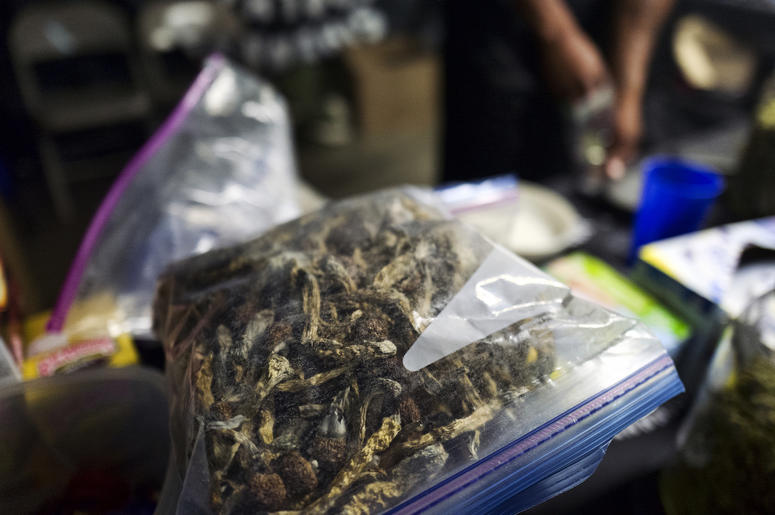 "A vendor bags psilocybin mushrooms at a pop-up cannabis market in Los Angeles on Monday, May 6, 2019. Voters decide this week whether Denver will become the first U.S. city to decriminalize the use of psilocybin, the psychedelic substance in ""magic mushro"