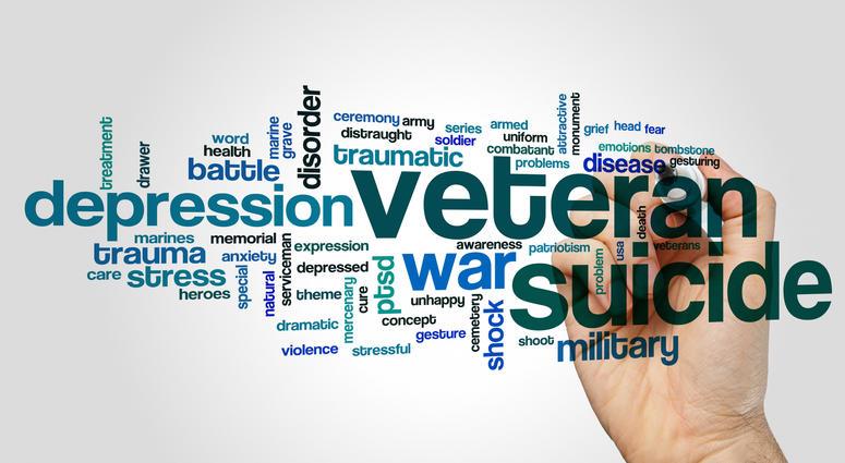 IAVA's Rapid Response Referral Program helps suicidal veterans