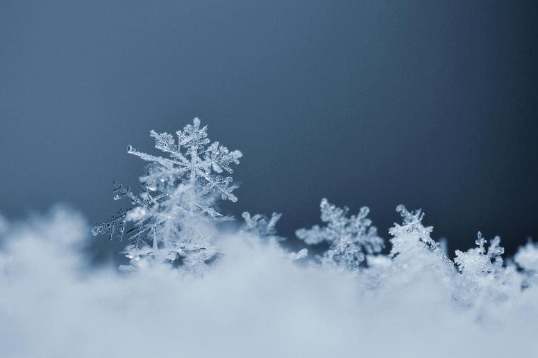 Snowflake. Macro photo of real snow crystal