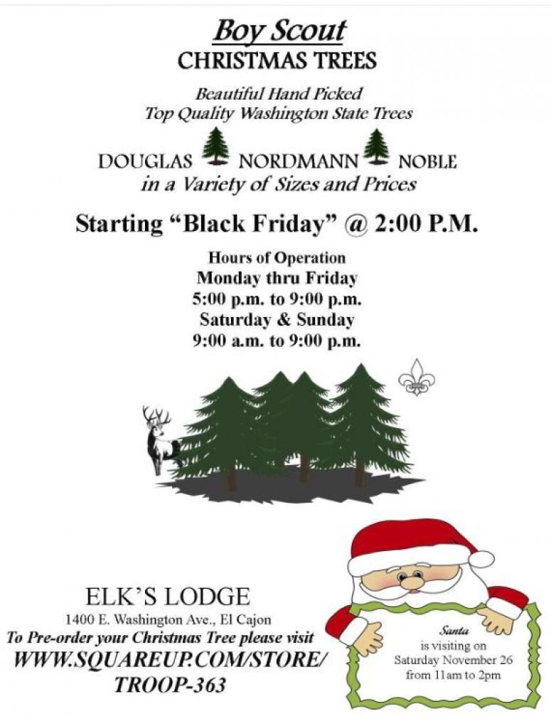 Christmas Fundraiser Flyer.Boy Scout Christmas Tree Fundraiser Alt 949