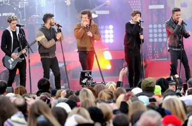 One Direction perform at Rumsey Playfield on November 26, 2013 in New York City