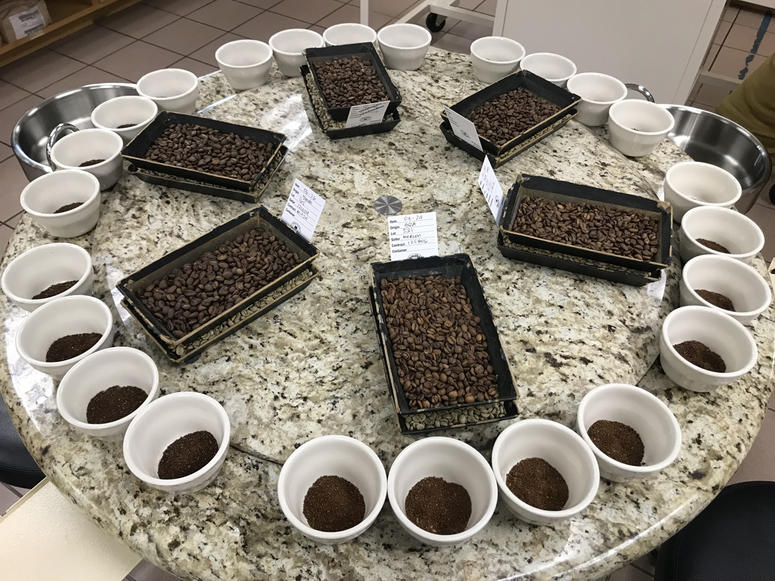 F.Gaviña & Sons Coffee Cupping Room (Photo credit: Foodie Chap/Liam Mayclem)