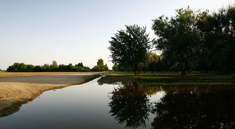 Irrigation water flows through an almond grove on May 8, 2008 near Bakersfield, California.