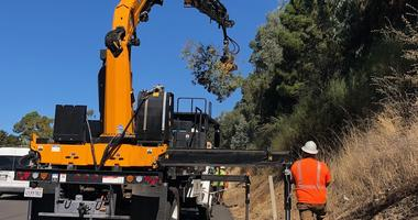 Caltrans crews cut down dying trees along Bay Area highways