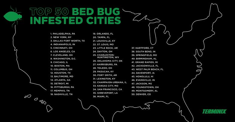 Pittsburgh One Of The Worst Cities In The U S  For Bed Bugs