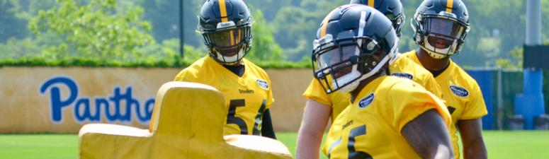 Steelers ILB Devin Bush at OTAs in 2019