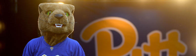 """Pittsburgh Panthers mascot """"Roc"""" stands on the field before the start of the game"""