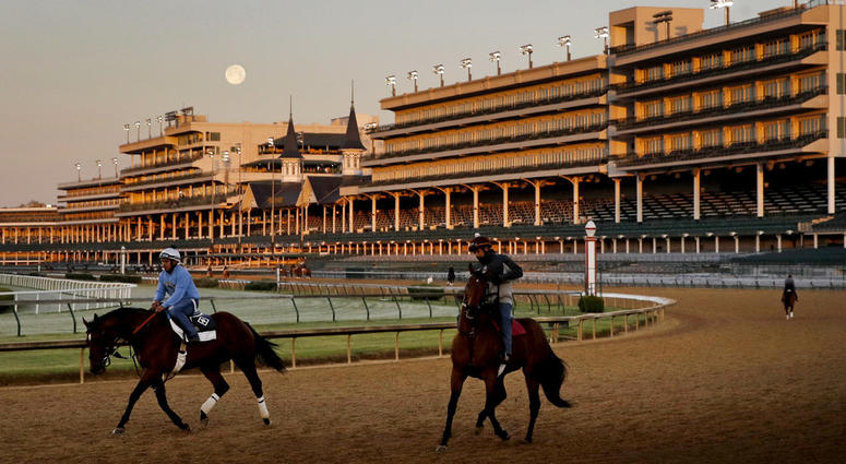 Horses at Churchill Downs