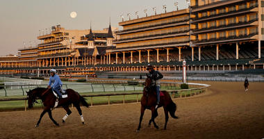 Horses at Churchill Downs