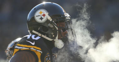 Jan 14, 2018; Pittsburgh, PA, USA; Pittsburgh Steelers wide receiver Martavis Bryant (10) celebrates after scoring a touchdown against the Jacksonville Jaguars during the second quarter in the AFC Divisional Playoff game at Heinz Field. Mandatory Credit: