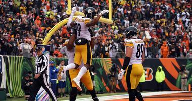 Steelers celebration