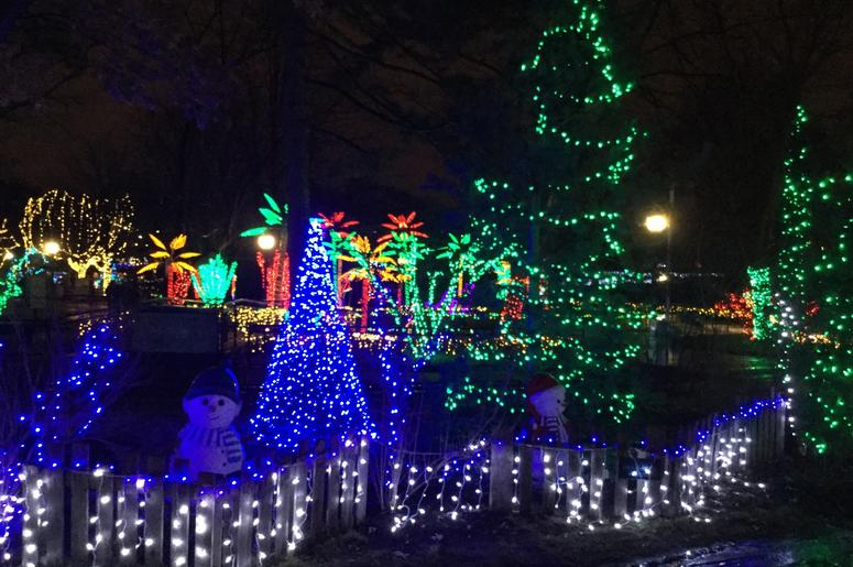 Wild Lights at the St. Louis Zoo