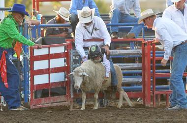 Erin Austin 100 3 The Bull