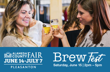 Alameda County Fair - Brew Fest 2019