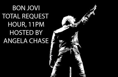 Bon Jovi Bounce Back