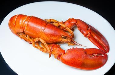 Lobster & Waffles