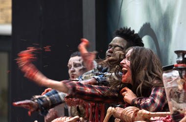 Zombies, Brains