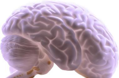 Company Plans To Freeze Live Human Brains