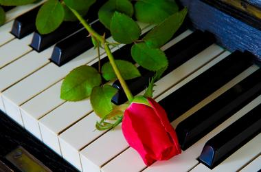 Piano & Flower