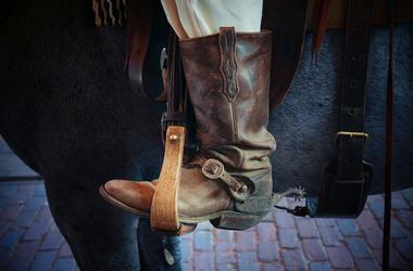 Cowboy Boot, Horse, Stirrup
