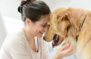 Woman, Dog, Cuddling
