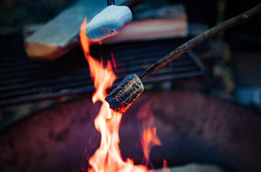 Roasting Marshmallows, Fire