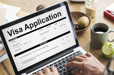Electronic, Visa Form, Computer