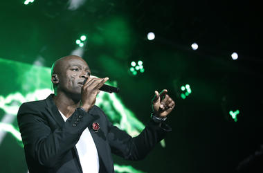 Seal, Concert, Singing, Microphone
