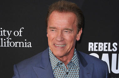 Arnold Schwarzenegger, Rebel With A Cause, Red Carpet, 2016