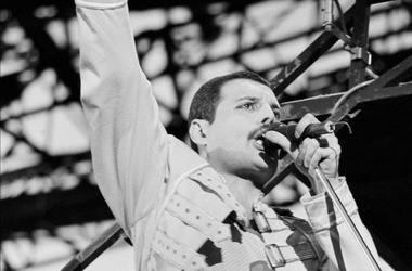 Freddie Mercury, 39, Singing, Concert, Queen, Champion, 1986