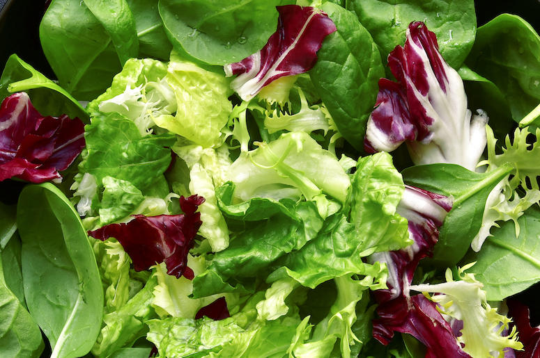 Vegetables, Lettuce, Salad, Close Up