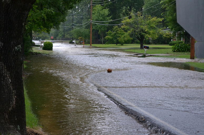 Flooded Street, Neighborhood