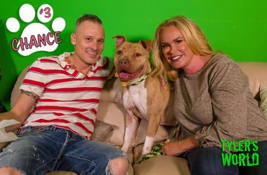 Pawtastic Friends of Las Vegas