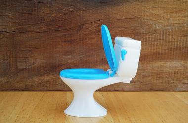 toy_toilet
