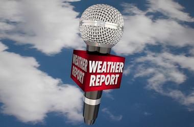 Weather Report Microphone