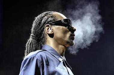 Snoop Dogg, Profile, Concert, Sunglasses, Smoke