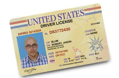 driver's_license