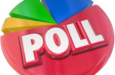 Poll Survey Results Voting Election Opinion