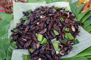 Fried crickets. Cooking, garlic.