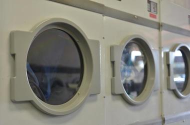 hides in dryer