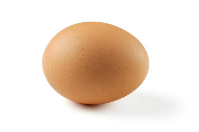 brown_egg
