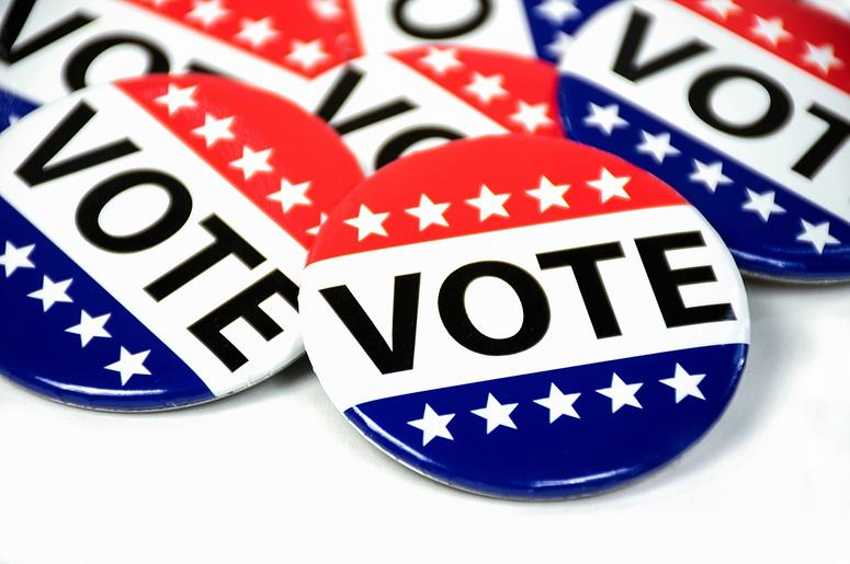 voter_pins