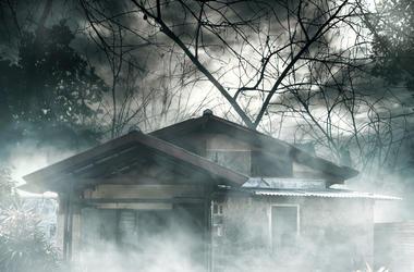 murder flip house, home renovation shows, true crime shows, true crime meets home renovation