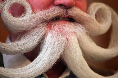 Blue Ribbon Beard Bonaza, beard competition, beard championships