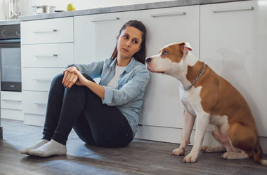 Science Says Your Stress is Stressing Your Dog Out Too