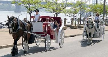 A horse drawn carriage with passengers drives past a river