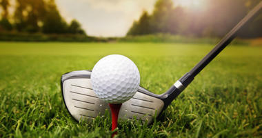 Photo of Golf club and ball in grass