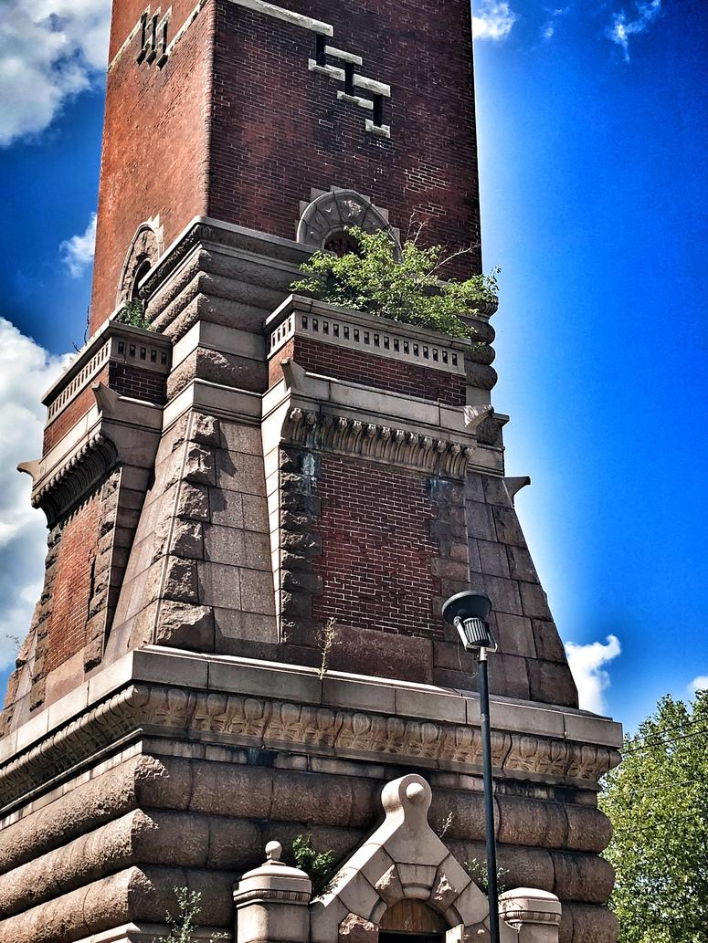 Tree growing out of the Bissell (or Red) Tower. Photo by D. Monterrey